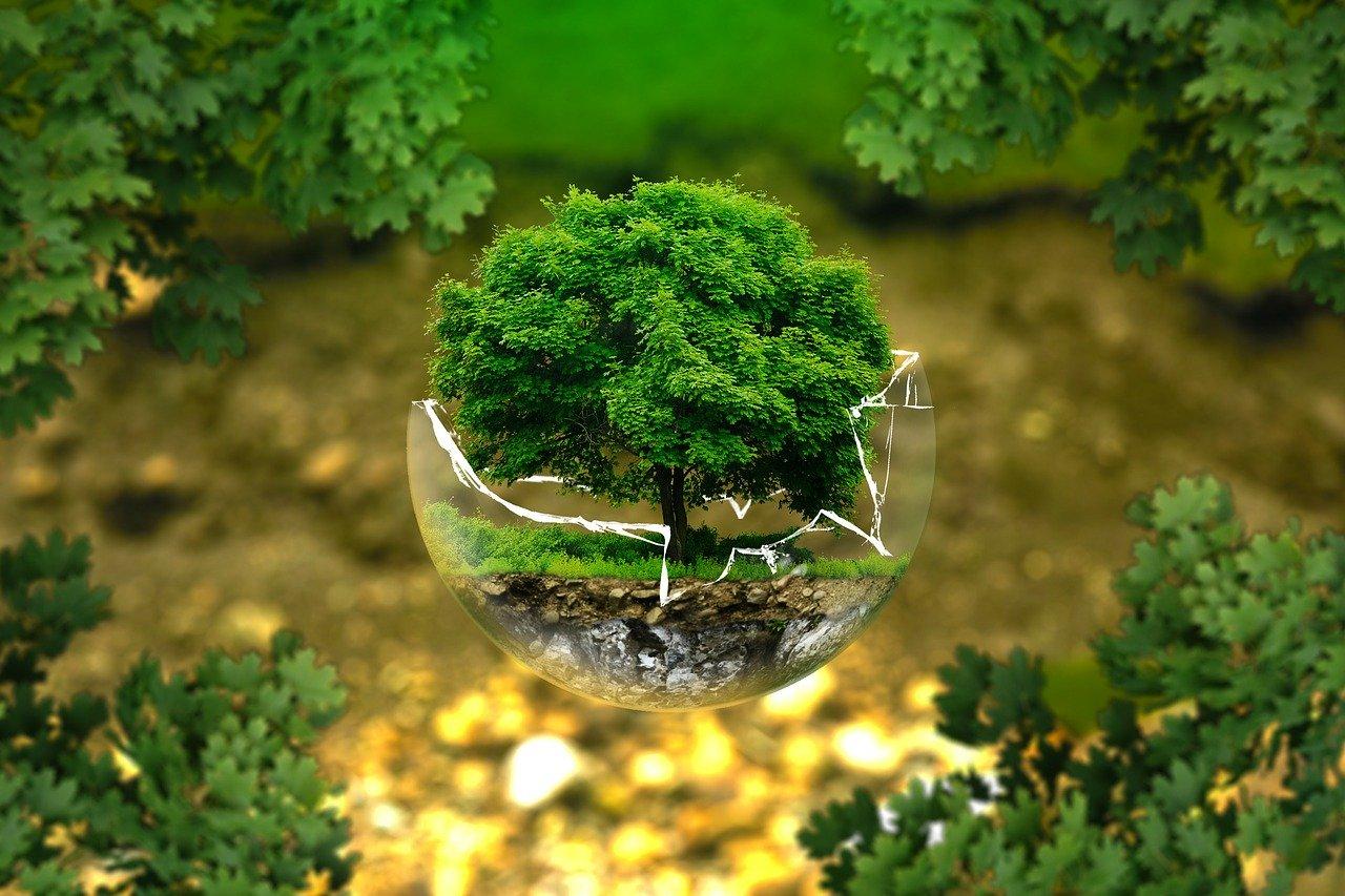 Animer un blog pour sensibiliser les citoyens à la protection de l'environnement